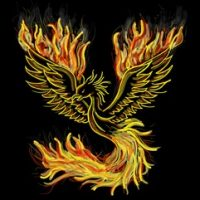 The Phoenix, rising out of the ashes of sexual assault and harassment!
